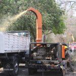 La Municipalidad reutilizará restos de podas de avenida Aguirre para compostaje